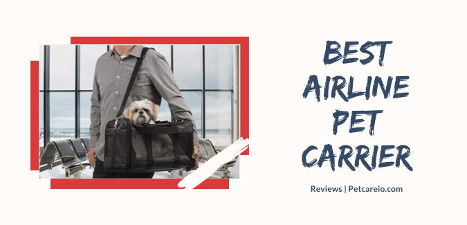 Best Airline Pet Carrier
