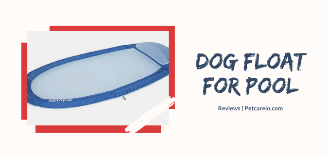 Dog Float For Pool – Top Options Reviewed! (Let Your Dog Swim)